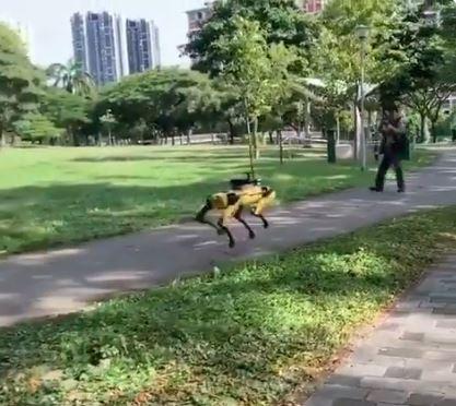 Black Mirror 6 non si farà, ma ci siamo già dentro: il cane robot fa rispettare le distanze a Singapore – VIDEO