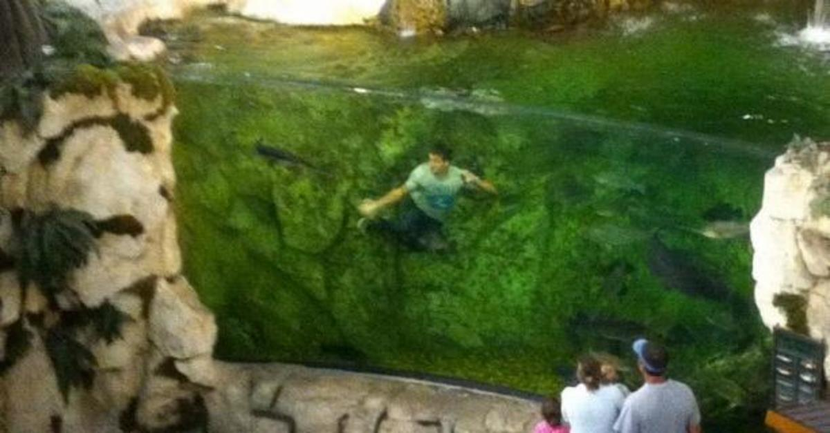 acquario giovane bass pro shop
