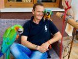 enzo salvi pappagallo