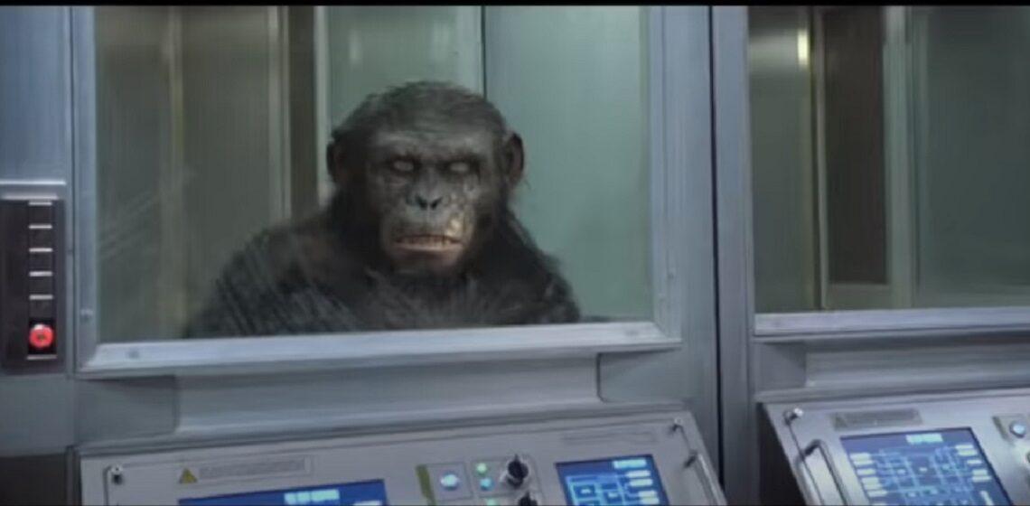 L'alba del pianeta delle scimmie: curiosità e trama del film e della saga