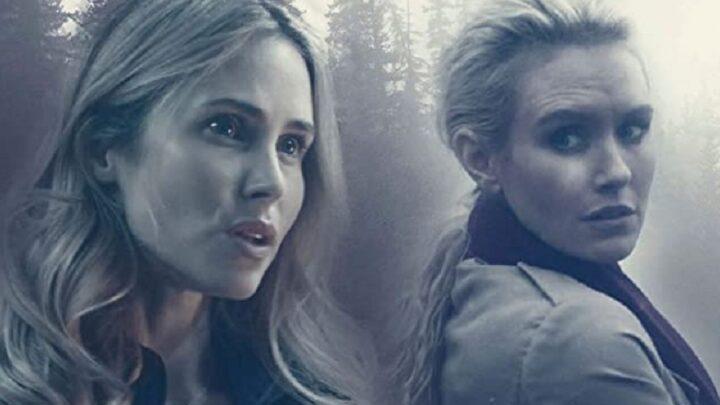 Due donne e un segreto: trama e curiosità del thriller del 2019