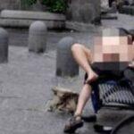Coppia di 20enni lo fa nella piazza centrale di Crema: non sarebbe la prima volta